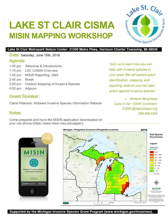 MISIN Workshop_2019.jpg